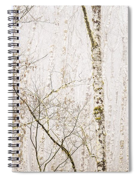 Alders In The Fog Spiral Notebook