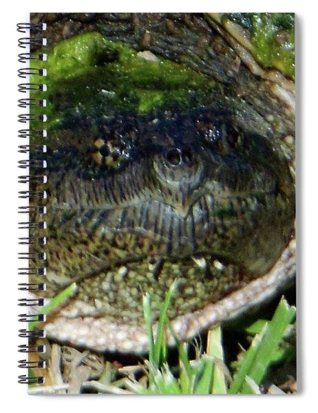 Algae Face Common Snapper Spiral Notebook