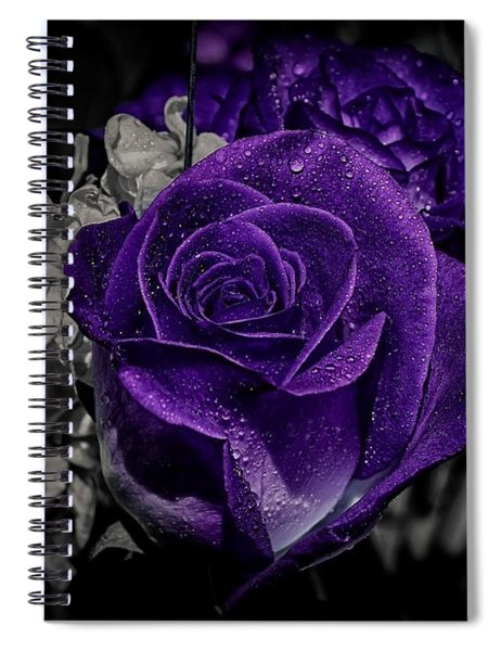 All About Colors Spiral Notebook