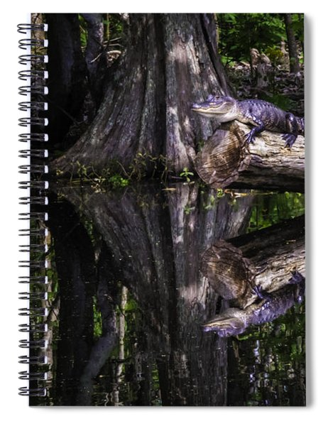 Alligators The Hunt, New Orleans, Louisiana Spiral Notebook