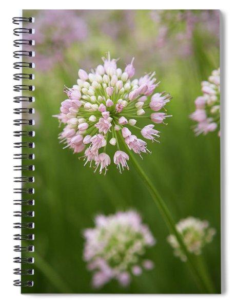 Allium Spiral Notebook
