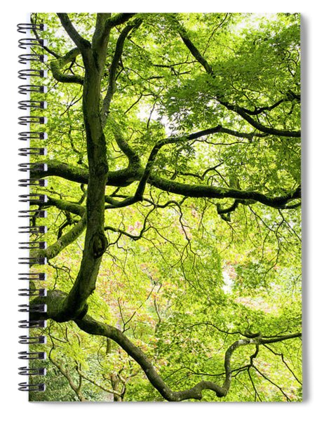 Almighty Acer Spiral Notebook