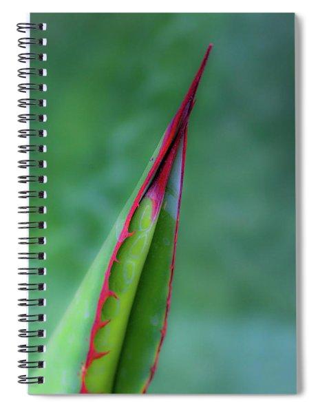 Aloe 7110-042418-1 Spiral Notebook