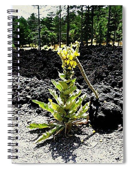 Alone Again Spiral Notebook