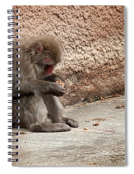 Alone With My Bread Crumbs Spiral Notebook