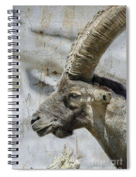Alpine Ibex Textured Spiral Notebook
