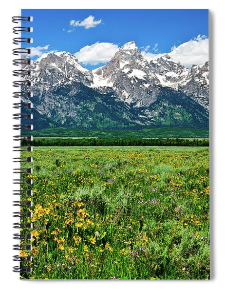 Alpine Spring Spiral Notebook