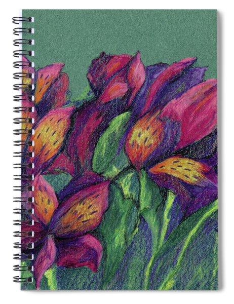 Altermyria Spiral Notebook