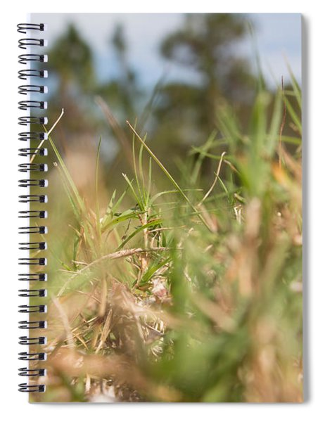 Always Searching Spiral Notebook