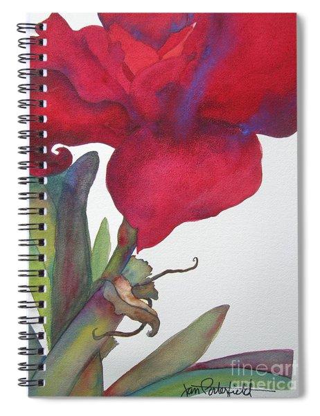 Amaryllis 2 Spiral Notebook