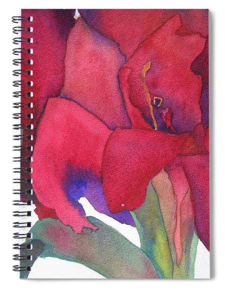 Amaryllis 3 Spiral Notebook