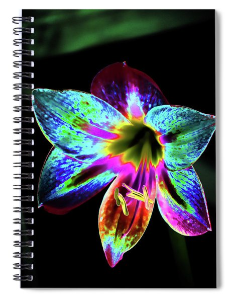 Amaryllis In Neon Spiral Notebook