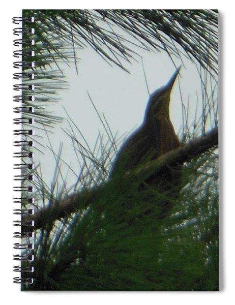 American Bitten Bird Spiral Notebook