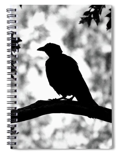 American Crow Silhouette Spiral Notebook