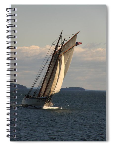 American Eagle In A Good Wind Spiral Notebook
