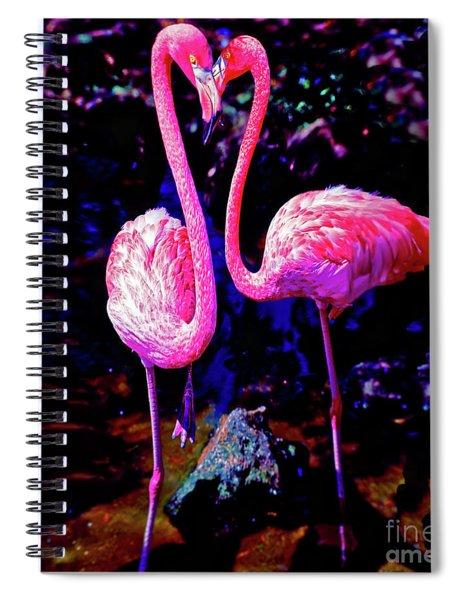 American Pink Flamingos Orlando Fl 3030300148 Spiral Notebook