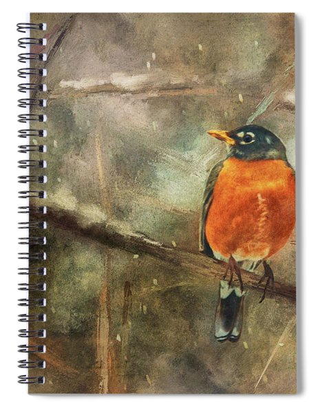 American Robin In The Snow Spiral Notebook