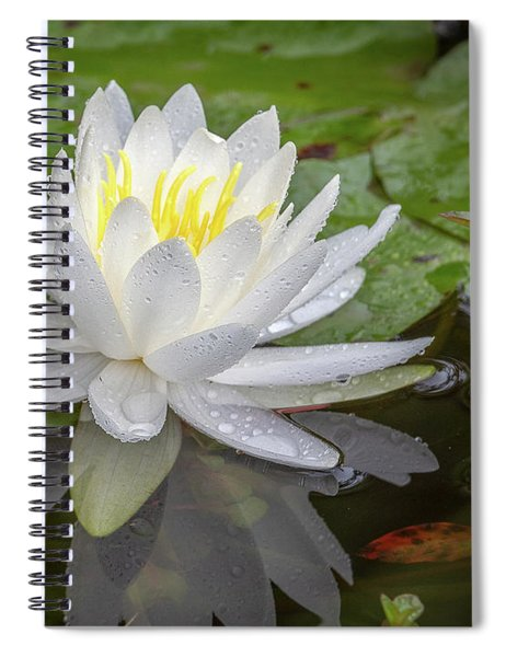American White Water Lily Spiral Notebook