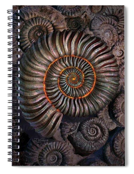Ammonite 1 Spiral Notebook