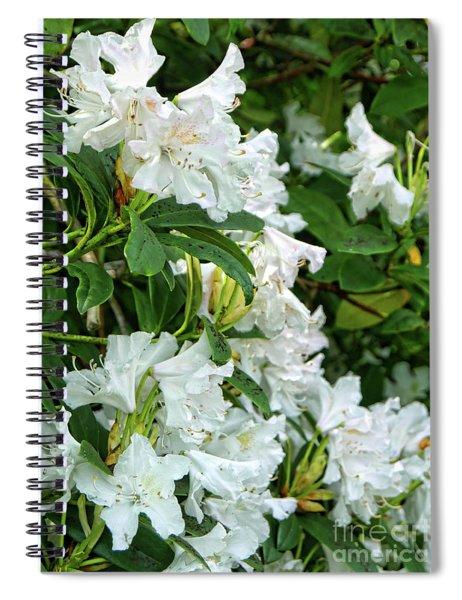 An Abundance Of White Spiral Notebook