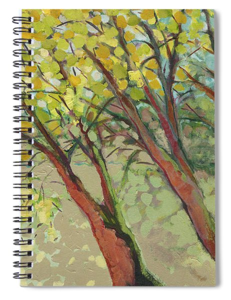 An Afternoon At The Park Spiral Notebook by Jennifer Lommers