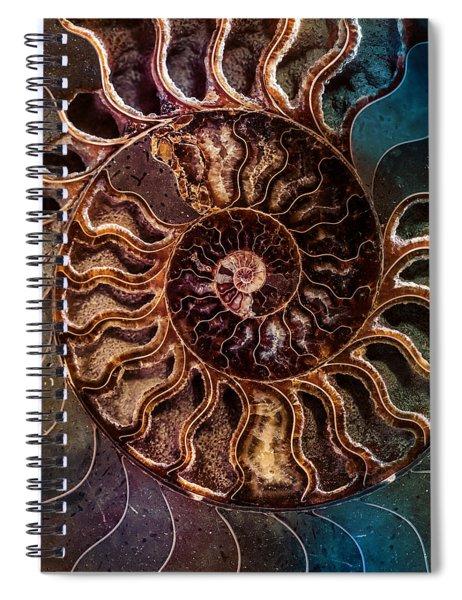 An Ancient Shell Spiral Notebook