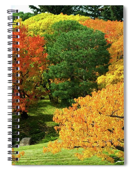 An Explosion Of Color Spiral Notebook