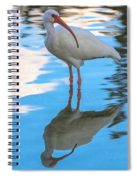 An Ibis Reflecting Spiral Notebook by Ed Gleichman