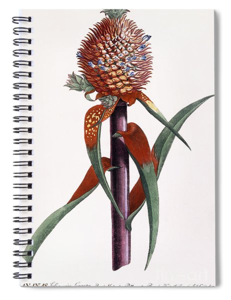 Ananas  Pineapple Spiral Notebook