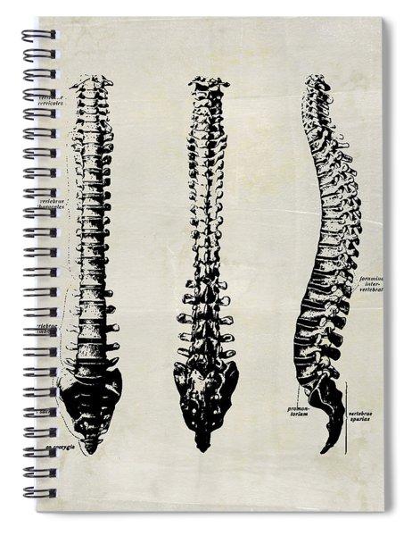 Anatomical Spine Medical Art Spiral Notebook