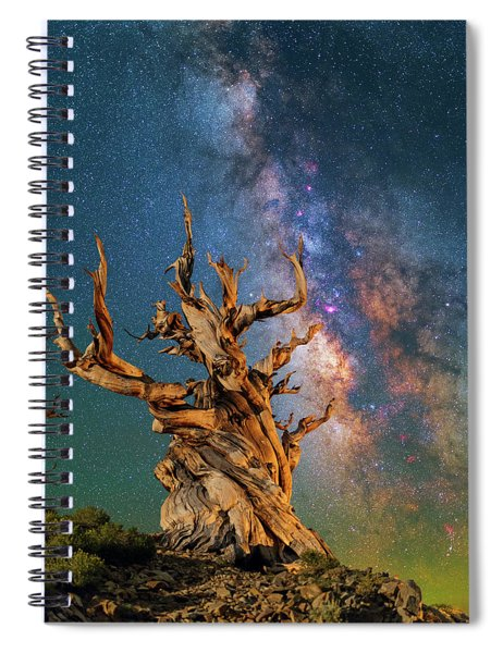 Ancient Beauty Spiral Notebook