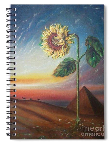 Blaa Kattproduksjoner              Ancient Energy Spiral Notebook