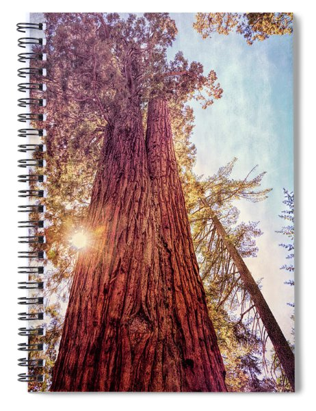 Ancient Of Days Spiral Notebook