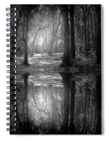 And There Is Light In This Dark Forest Spiral Notebook