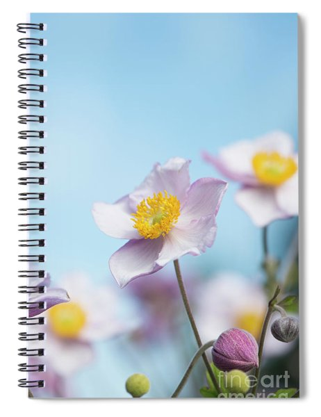 Anemone  Elegans Flowers Spiral Notebook