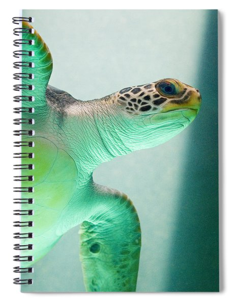 Spiral Notebook featuring the photograph Angel 2 by Skip Hunt