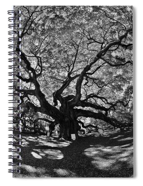 Angel Oak Johns Island Black And White Spiral Notebook