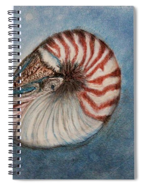 Angel's Seashell  Spiral Notebook