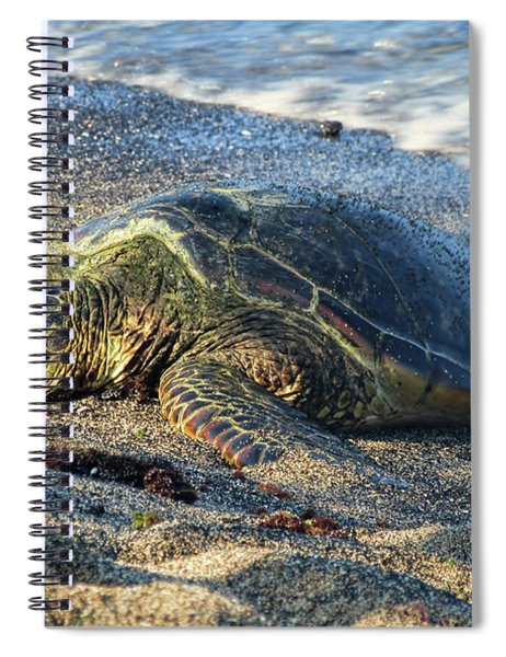 Another Day In Paradise Spiral Notebook