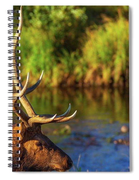 Antlers Of An Elk Spiral Notebook