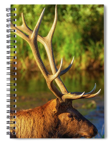 Spiral Notebook featuring the photograph Antlers Of An Elk by John De Bord