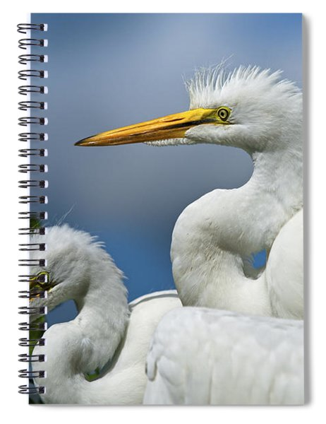 Anxiously Waiting Spiral Notebook