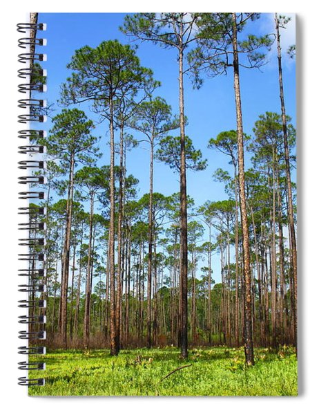 Appalachicola National Forest Spiral Notebook