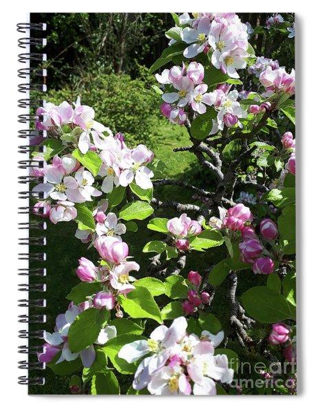 Apple Blossom Bursting Out Spiral Notebook