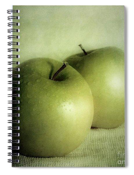 Apple Painting Spiral Notebook