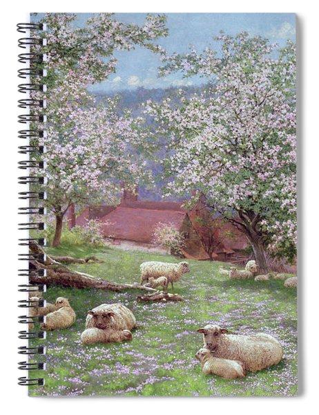 Appleblossom Spiral Notebook