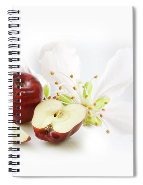 Apples And Blossom Spiral Notebook