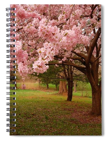 Approach Me - Holmdel Park Spiral Notebook