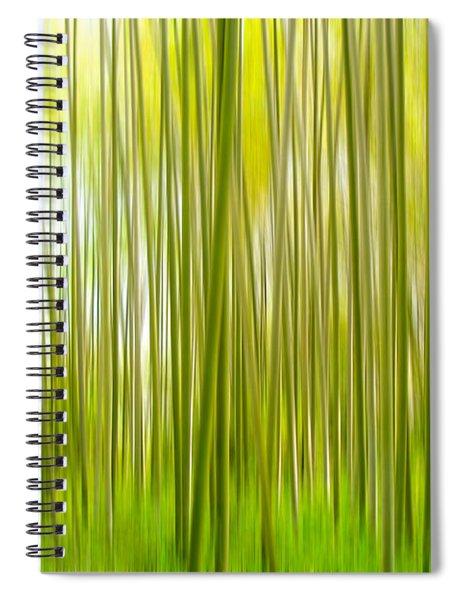 Arashiyama Spiral Notebook