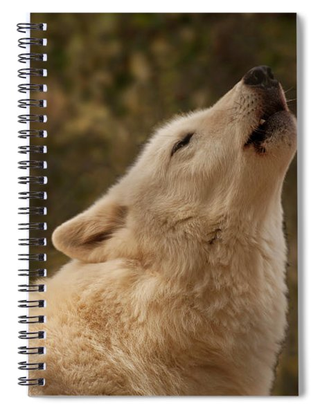 Arctic Wolf Howling Spiral Notebook